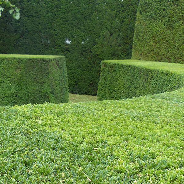 garten und landschaftsbau gartenpflege stuttgart. Black Bedroom Furniture Sets. Home Design Ideas